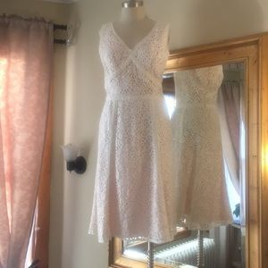 Ann Taylor - Dress - Size 8